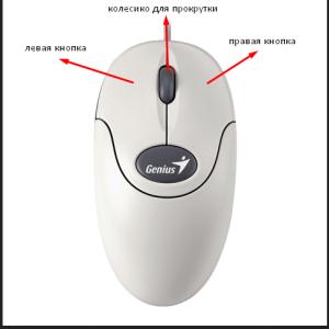 схема кнопок мыши