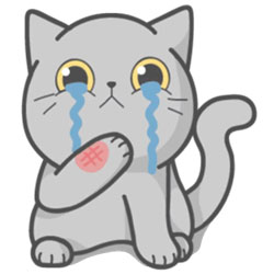 Котенок поранил лапку и ему грустно.